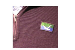 WSV 'De Eems' patch